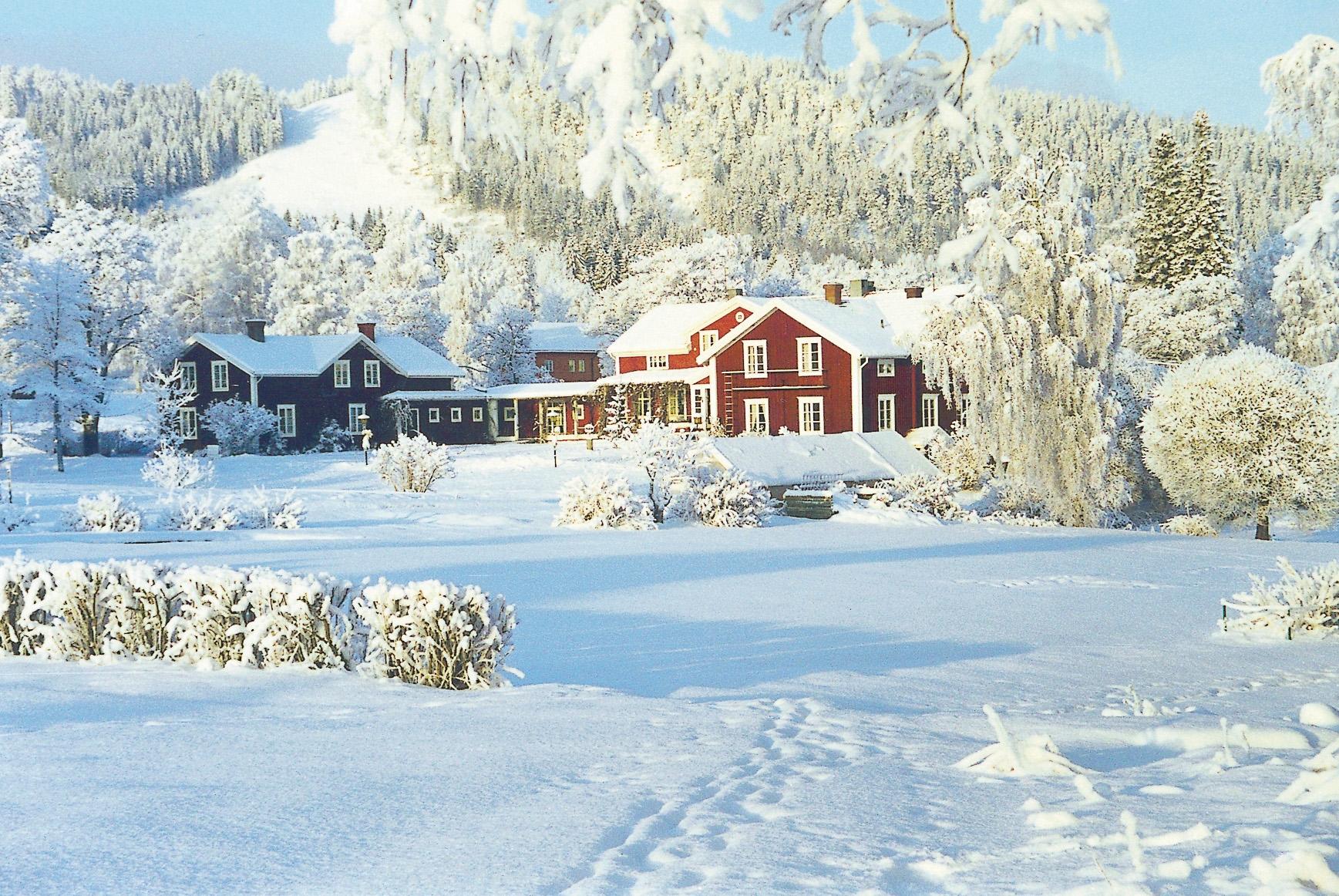 Julbord Järvsö